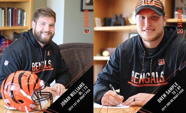 Bengals signed OT Jonah Williams + TE Drew Sample